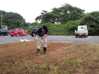 福島ひまわり里親プロジェクト。